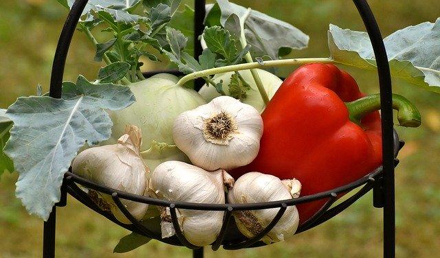 Nahrungsheilkraft | Wie Nahrung heilt(2)
